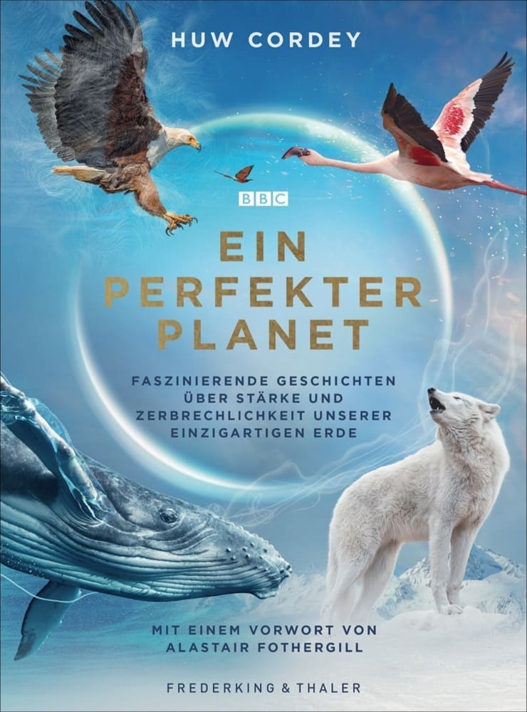 Ein perfekter Planet